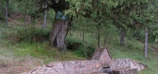 Fuente de Matahombres